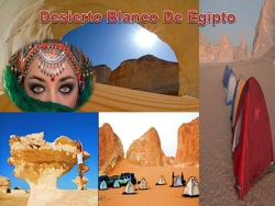 Egipto Safari Tours